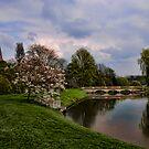 Dream Garden~ by WJPhotography