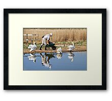 Feeding The Swans - Abbotsbury Framed Print