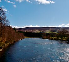 The River Dee by Larissa  White Brown