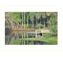 Gemini Springs Park, Debary, Florida Art Print