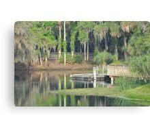 Gemini Springs Park, Debary, Florida Canvas Print