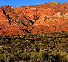 Snow Canyon-St. George Utah by Steve  Taylor