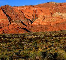 Snow Canyon-St. George Utah by Steve  Taylor