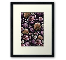 Cream and Lavender Dahlia Collage Framed Print