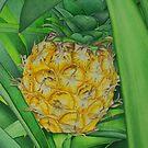 Miniature Pineapple by joeyartist