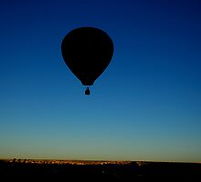 Ballooning at the Albuquerque International Balloon Fiesta, Albuquerque, NM, USA by Greg Meland