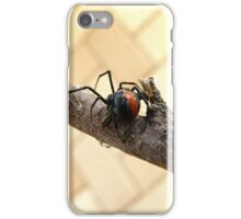 Where to Now ... Redback Spider : Latrodectus hasselti iPhone Case/Skin