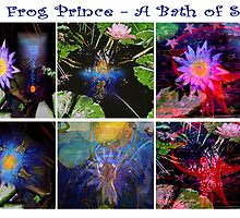 The Frog Prince - A Bath of Stars by Marilyn Baldey