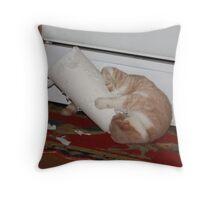 Paper towel roll must die! '09 Throw Pillow