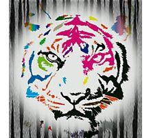 Art tiger Photographic Print