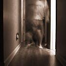 Ghost Dance by John Ayo