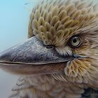 Blue-winged Kookaburra by Christopher Pope