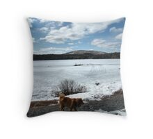 'Cindy in Maine, Eagle Lake 3' Throw Pillow