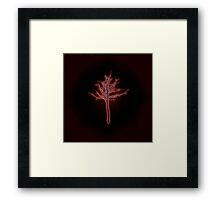 Springlight Dharma Framed Print