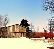 Spring in Quebec, Canada by Elfriede Fulda