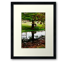 Mirror of Nature Framed Print