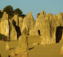 Pinnacles Desert Western Australia by Daniel Fitzgerald