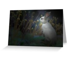 bun-bun -1661 Greeting Card