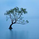 Wanaka Mist by Ben Messina