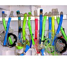 Go snorkeling Photographic Print