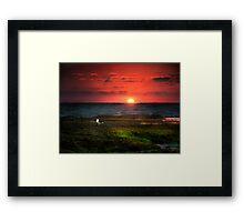 Seagull on Sunset - Sorrento - Mornington Peninsula Framed Print