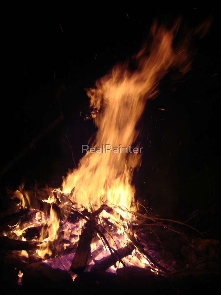 The horse head and the calf head in the  Fire see it? by RealPainter