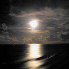 Full Moon On The Horizon by janewiebenga