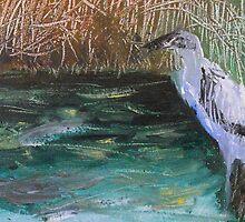 Heron by jondeitner