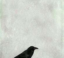 A Raven by Priska Wettstein