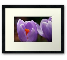 Glowing In The Center Framed Print