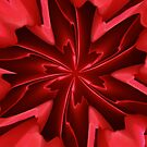 Kaleidoscopes by David Dunham