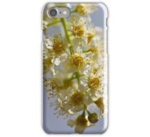 Hanging Blossoms iPhone Case/Skin