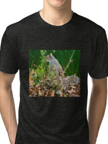 SQUIRREL HIDING IN THE GREENERY Tri-blend T-Shirt