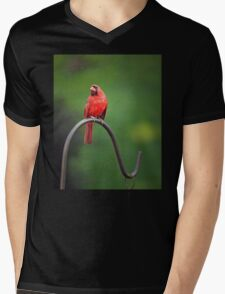 The Pensive Cardinal Mens V-Neck T-Shirt