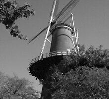 Molen de Valk, Leiden Netherlands by Mishimoto