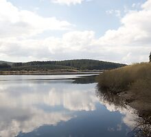 Alwen reservoir by ccrcats