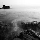 Tide by Aditya Swami