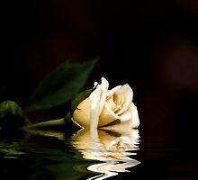 Broken Romance by Donna Adamski