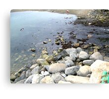 From Rocks to Rivers Canvas Print