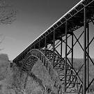 New River Gorge Bridge VIII by Lisawv