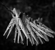 pegs by Tony Day