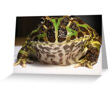 An Argentine Horned Frog Greeting Card