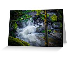 Little River in a Rush. Greeting Card