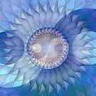 Blue Shells by Hugh Fathers