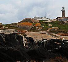Montague Island Lighthouse by Evita