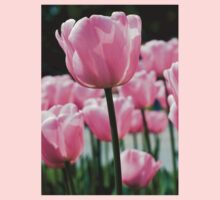 Pink Tulip Kids Clothes