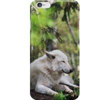 Woodland Slumber iPhone Case/Skin