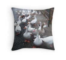 Territorial Geese Throw Pillow