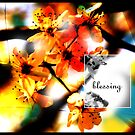 Blessing by StacyLee