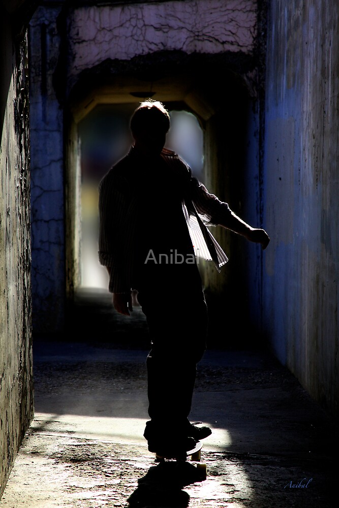 The Journey... by Anibal